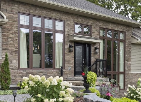 Window, Glass and Appearance Options